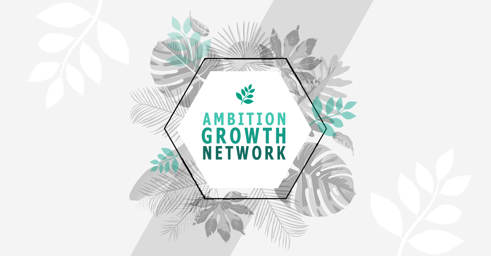 Ambition Growth Network By Karlie and Jo